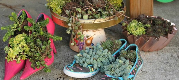 the-blue-building-antiques-shopatblu-succulent-decor-group-planters