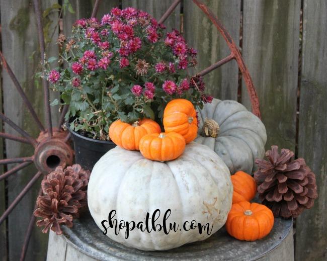 the-blue-building-shopatblu-pinescones-home-decor-pumpkins