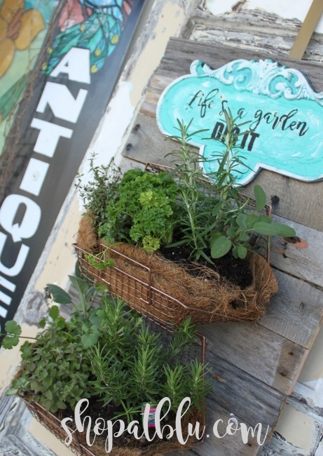The Blue Building Antiques Alabaster AL fresh herb wall garden